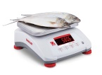 Ohaus V41PWE1501 T-M | Valor_4000PW_Propped_Fish_Right